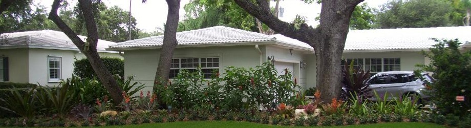Miami Tree Services